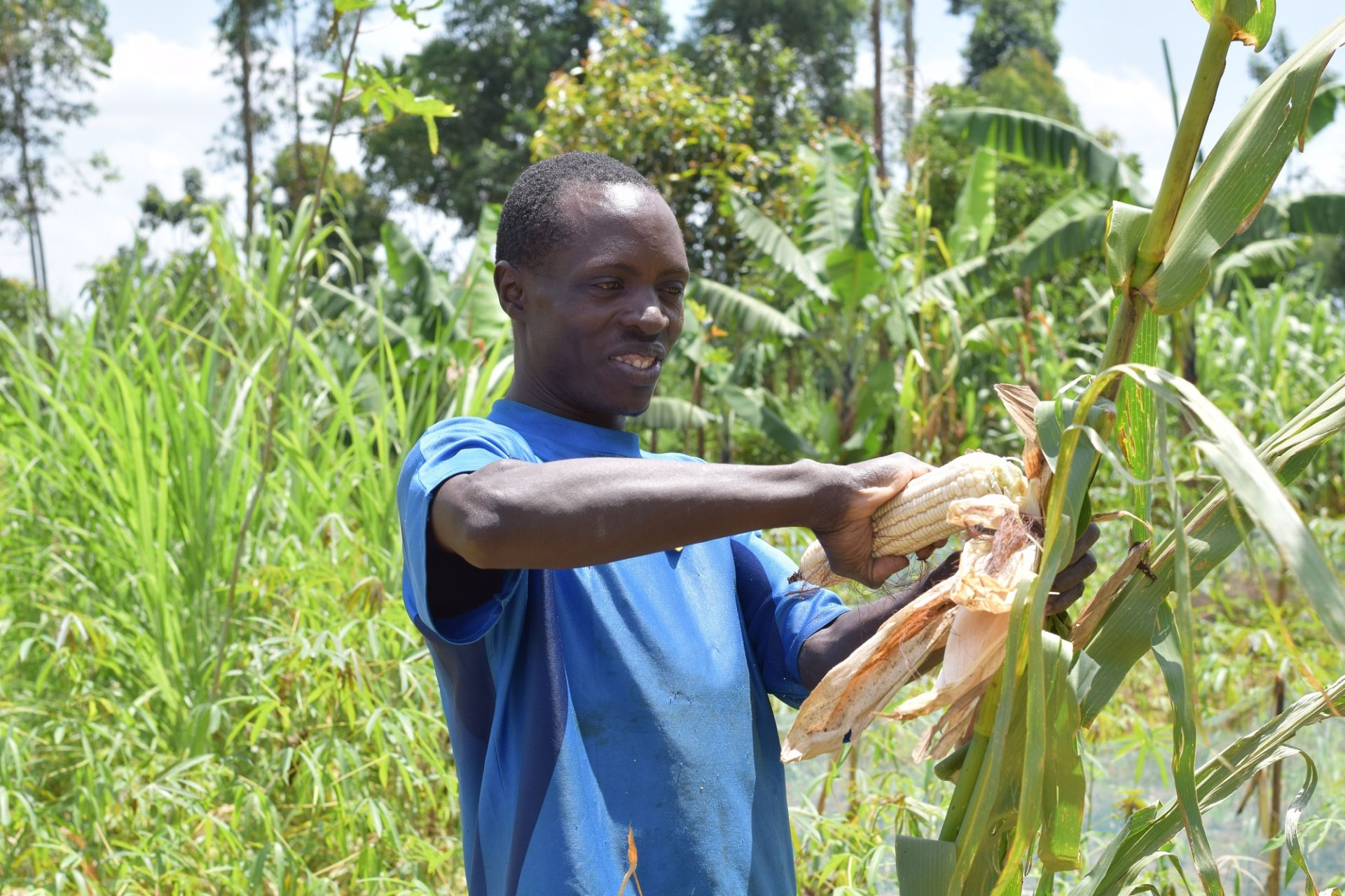 Landbouw%206%20WEB.jpg